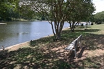 Improving the Future Health of City Park Lake