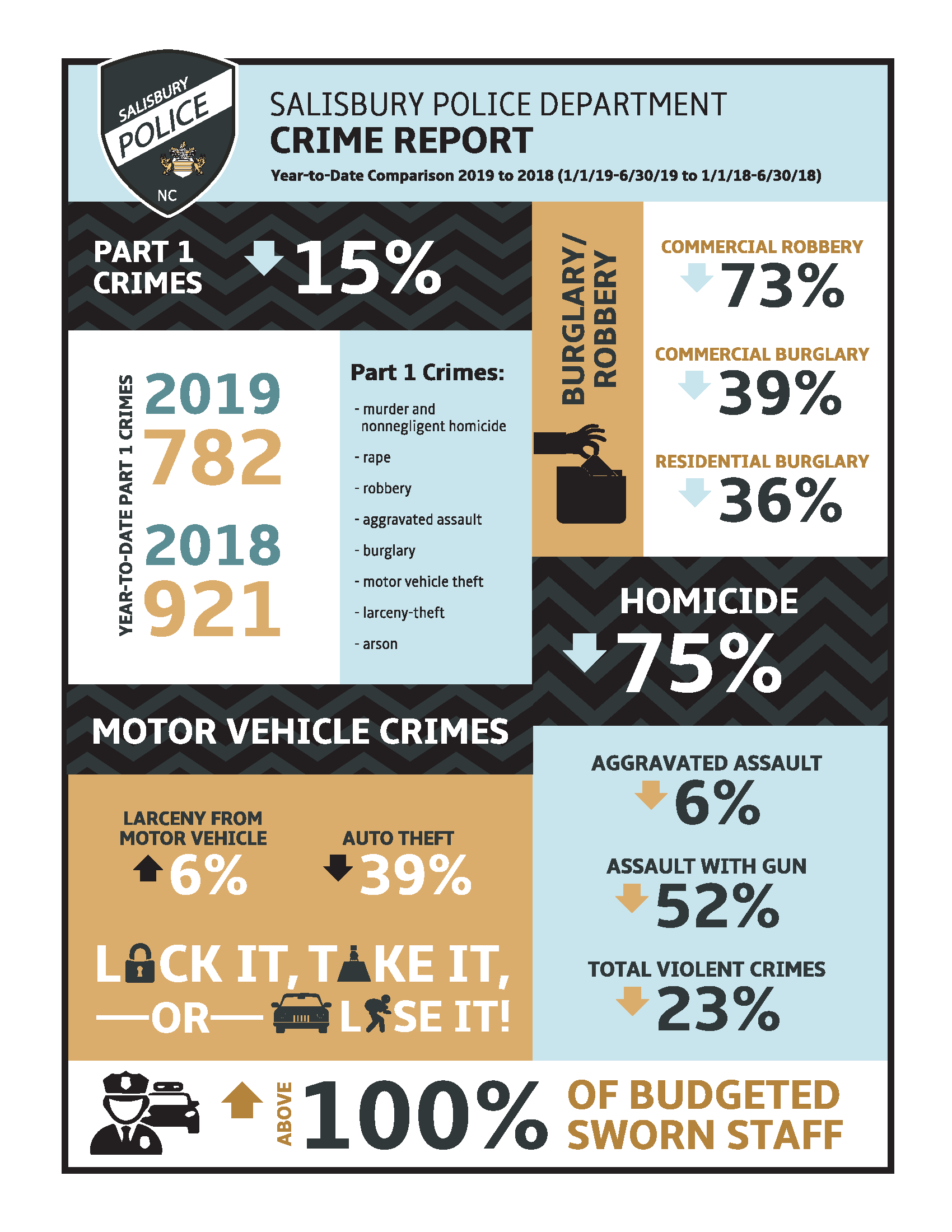 inforgraphic of crime report for salisbury police department, year-to-date